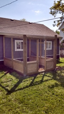 Custom Designed Catio